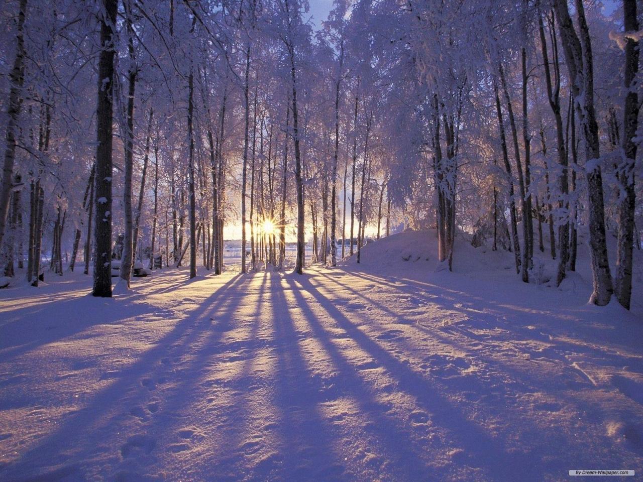 Image Result For Winter Wonderland Wallpaper On We Heart It