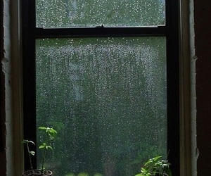 rain, window, and green image