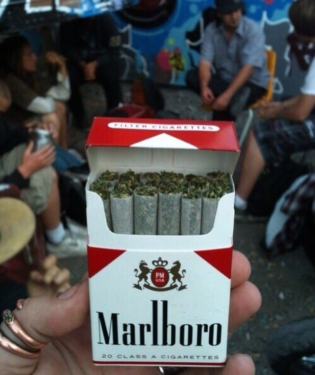 weed, marlboro, and smoke image
