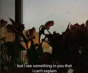 quotes, aesthetic, and flowers image