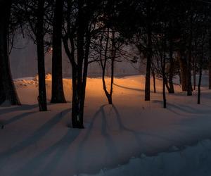 dark, night, and nighttime image
