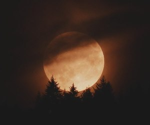 moon, autumn, and night image