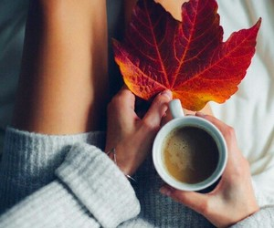 autumn, beauty, and coffee image