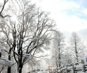 country living, farm, and snow image