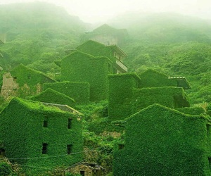 green, nature, and house image
