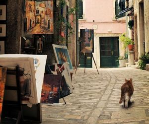 cat, art, and street image