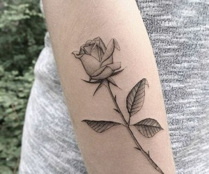 tattoo, rosa, and rose image