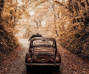 autumn, photography, and vintage image