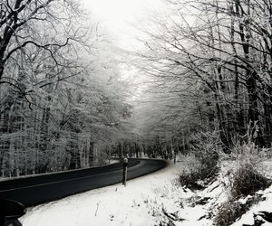 road, winter, and buetiful image