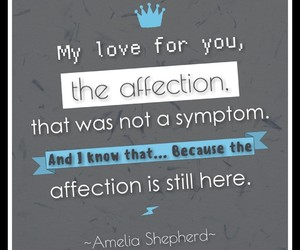 greys anatomy, quotes, and amelia shepherd image