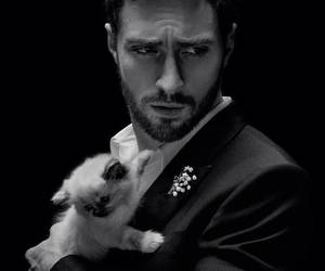 beautiful, Givenchy, and cat image