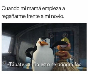 facebook, memes, and novios image