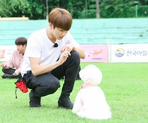 adorable, bts, and run episode 22 image