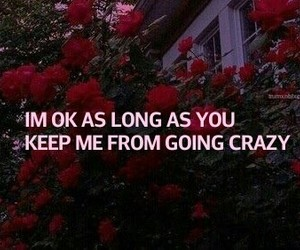 grunge, roses, and tumblr image