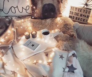 lights, love, and cozy image