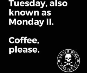 coffee, tuesday, and week image