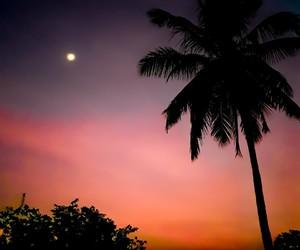 beautiful sky, moonrise, and night sky image