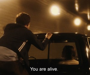 quotes, alive, and the perks of being a wallflower image