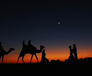 desert, night, and wedding image