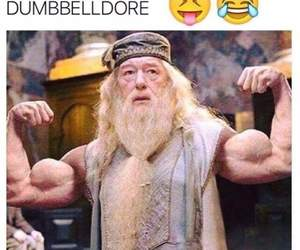 dumbledore, gym, and harry potter image