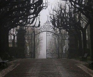 black and white, dark, and gate image