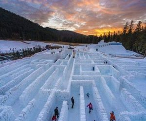 maze, snow, and winter image