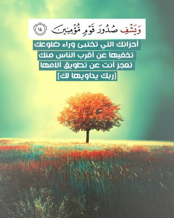 arabic and article image