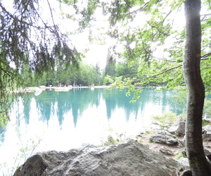 lac and forêt image