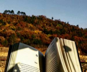 after, autumn, and book image