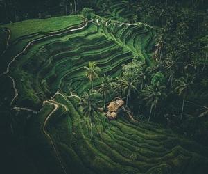 amazing, nature, and god creation image