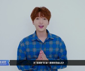 lq, sewoon, and pd101 image