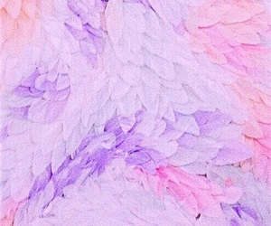 feather, pastel, and wallpaper image