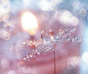 light, bokeh, and drops image