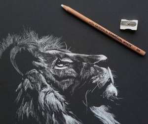drawing and lion image