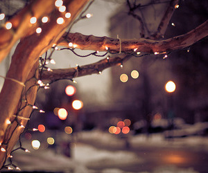 lights, nighttime, and night image