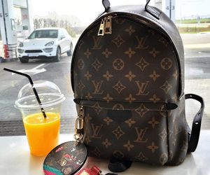 Louis Vuitton, luxury, and backpack image