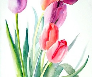 tulips and watercolor image