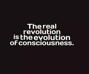 evolution, vegan, and consciousness image