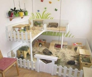 ideas, house, and hamster image