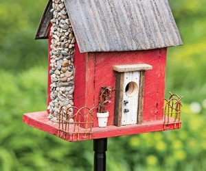 bird, birdhouse, and house image