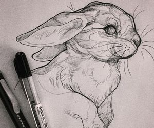 art, drawing, and rabbit image