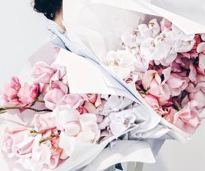 flowers, pink, and white image