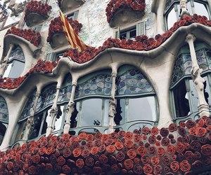 Barcelona, beautiful, and flowers image