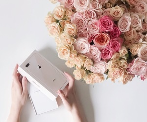 christmas, flowers, and goals image