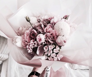 gold, tumblr inspiration, and flowers roses plants image