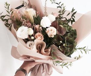 fleur, Fleurs, and flower image