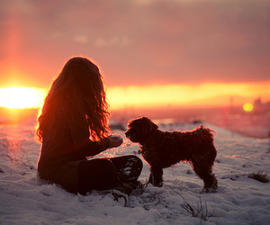 girl, dog, and snow image