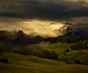 nature, beautiful, and grass image