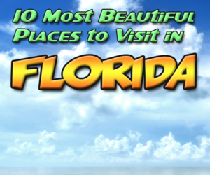 florida, travel blog, and tourist attractions image
