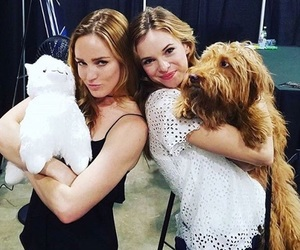 arrow, danielle panabaker, and tv image